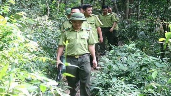 Bắc Giang: Truy đuổi lâm tặc, cán bộ kiểm lâm bị chém trọng thương - Ảnh 1