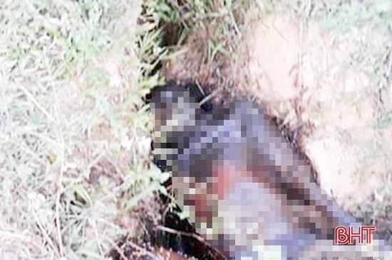 Hà Tĩnh: Tá hỏa phát hiện thi thể người đàn ông đang phân hủy dưới mương nước - Ảnh 1