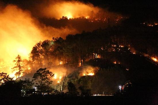 Video: Cháy rừng bùng phát lại trong đêm, người dân hoảng hốt sơ tán - Ảnh 1