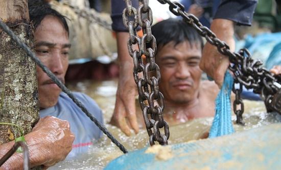 Hàng trăm người dân vật lộn cứu lúa tại Đắk Lắk - Ảnh 1
