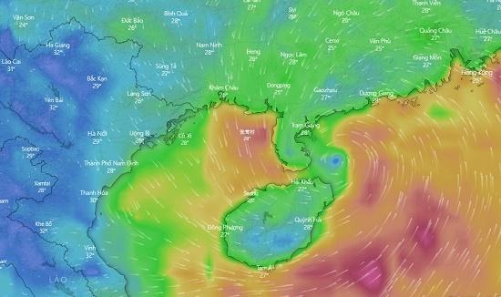 Tâm bão số 3 đổ bộ vào Quảng Ninh, Hải Phòng - Ảnh 1