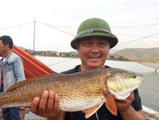 Quảng Bình: Ngư dân bắt được cặp cá nghi sủ vàng nặng 7kg trên sông Loan - Ảnh 2