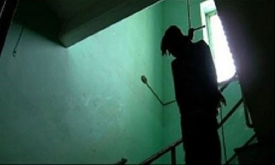 Thái Bình: Công an viên tử vong trong tư thế treo cổ trên cây dâu da - Ảnh 1