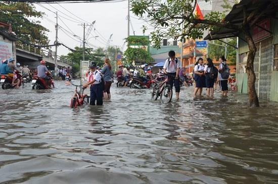 Triều cường dâng cao, người dân TP.HCM hối hả xây tường, đắp bao ngăn nước - Ảnh 8