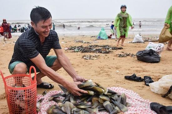 Cả trăm người dân đổ xô đi vớt vẹm trôi dạt vào bờ - Ảnh 2