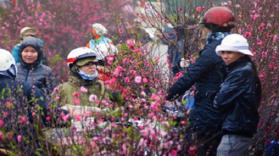 Thời tiết Tết nguyên đán Canh Tý 2020: Hà Nội mưa rét - Ảnh 1