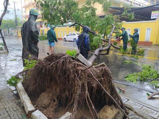 Cận cảnh sức phá hoại khủng khiếp của bão số 9 đổ bộ vào Quảng Ngãi: Cây xa la liệt đổ, thổi bay mái tôn - Ảnh 2