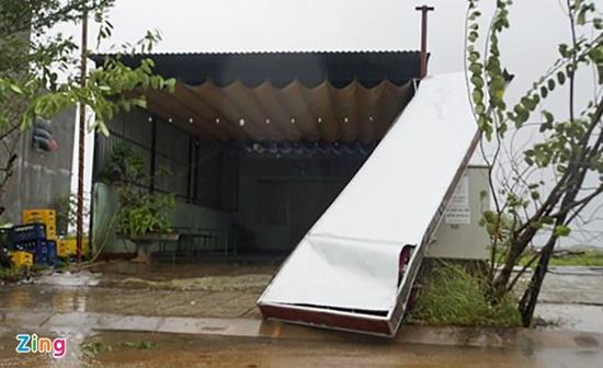 Cận cảnh sức phá hoại khủng khiếp của bão số 9 đổ bộ vào Quảng Ngãi: Cây xa la liệt đổ, thổi bay mái tôn - Ảnh 3