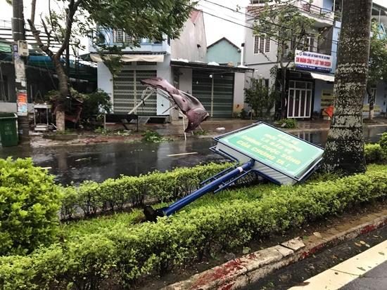 Cận cảnh sức phá hoại khủng khiếp của bão số 9 đổ bộ vào Quảng Ngãi: Cây xa la liệt đổ, thổi bay mái tôn - Ảnh 5