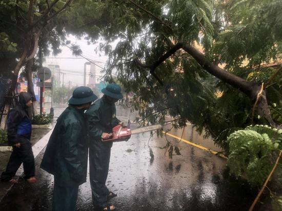Cận cảnh sức phá hoại khủng khiếp của bão số 9 đổ bộ vào Quảng Ngãi: Cây xa la liệt đổ, thổi bay mái tôn - Ảnh 8