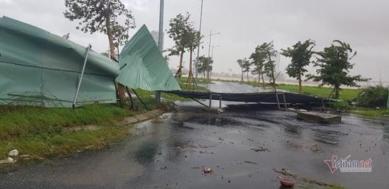 Cận cảnh sức phá hoại khủng khiếp của bão số 9 đổ bộ vào Quảng Ngãi: Cây xa la liệt đổ, thổi bay mái tôn - Ảnh 9