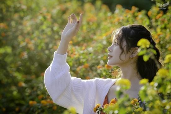 Nhan sắc ngọt ngào của nữ sinh học viện Tài chính giữa rừng hoa dã quỳ - Ảnh 7