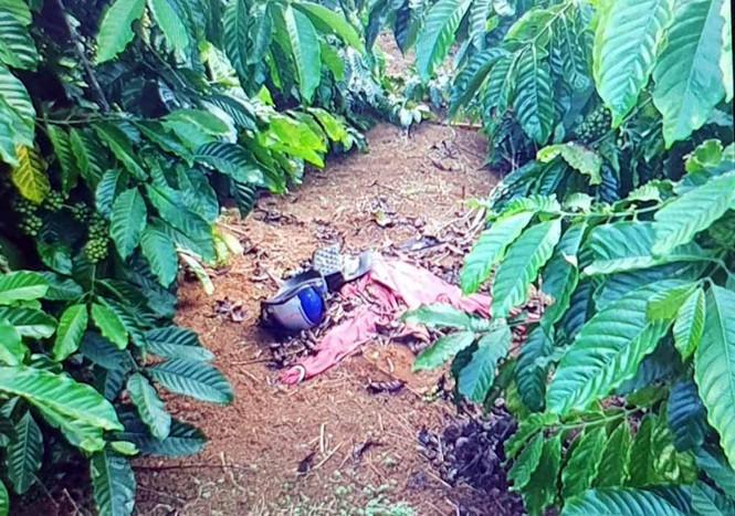 """Tin tức pháp luật mới nhất ngày 16/12: Tử hình đối tượng giết """"người tình"""" trong vườn cà phê - Ảnh 1"""
