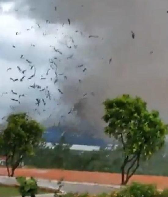 Ám ảnh hiện trường vụ sập nhà xưởng ở Vĩnh Phúc khiến 3 người chết, 18 người bị thương - Ảnh 1