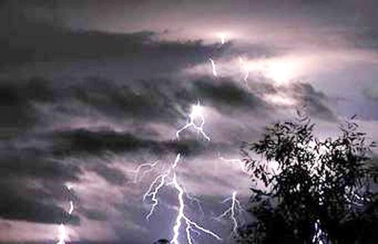 Vội nấp dưới gốc cây khi gặp mưa lớn, đôi vợ chồng bị sét đánh thương vong - Ảnh 1