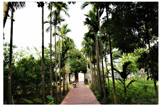 Cảnh sắc cổ kính bên trong Viên Minh tự - nơi Chủ tịch tập đoàn Tôn Hoa Sen quy y Tam bảo - Ảnh 3