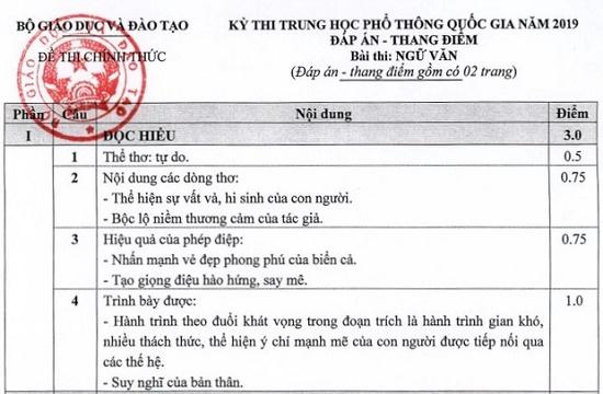 Đáp án, đề thi chính thức môn Ngữ văn kỳ thi THPT quốc gia 2019 - Ảnh 2