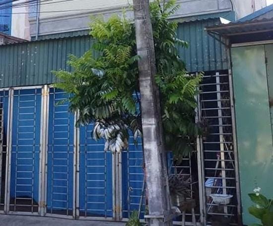 Tin tức pháp luật mới nhất ngày 25/8/2020: Làm rõ vụ 2 vợ chồng tử vong trong căn phòng khóa trái cửa - Ảnh 2