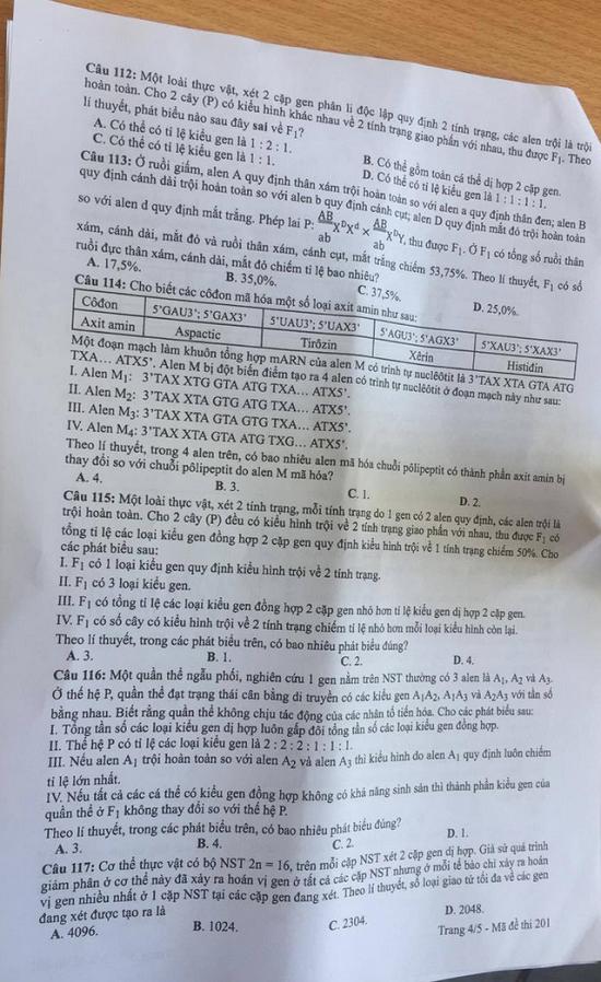 Đáp án, đề thi môn KHTN Hóa học - Vật lý - Sinh học mã đề 221 tốt nghiệp THPT 2020 chuẩn nhất, chính xác nhất - Ảnh 5
