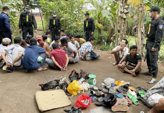 Tin tức pháp luật ngày 9/1: Tình tiết mới vụ người phụ nữ bị sát hại ở Hà Nội - Ảnh 2