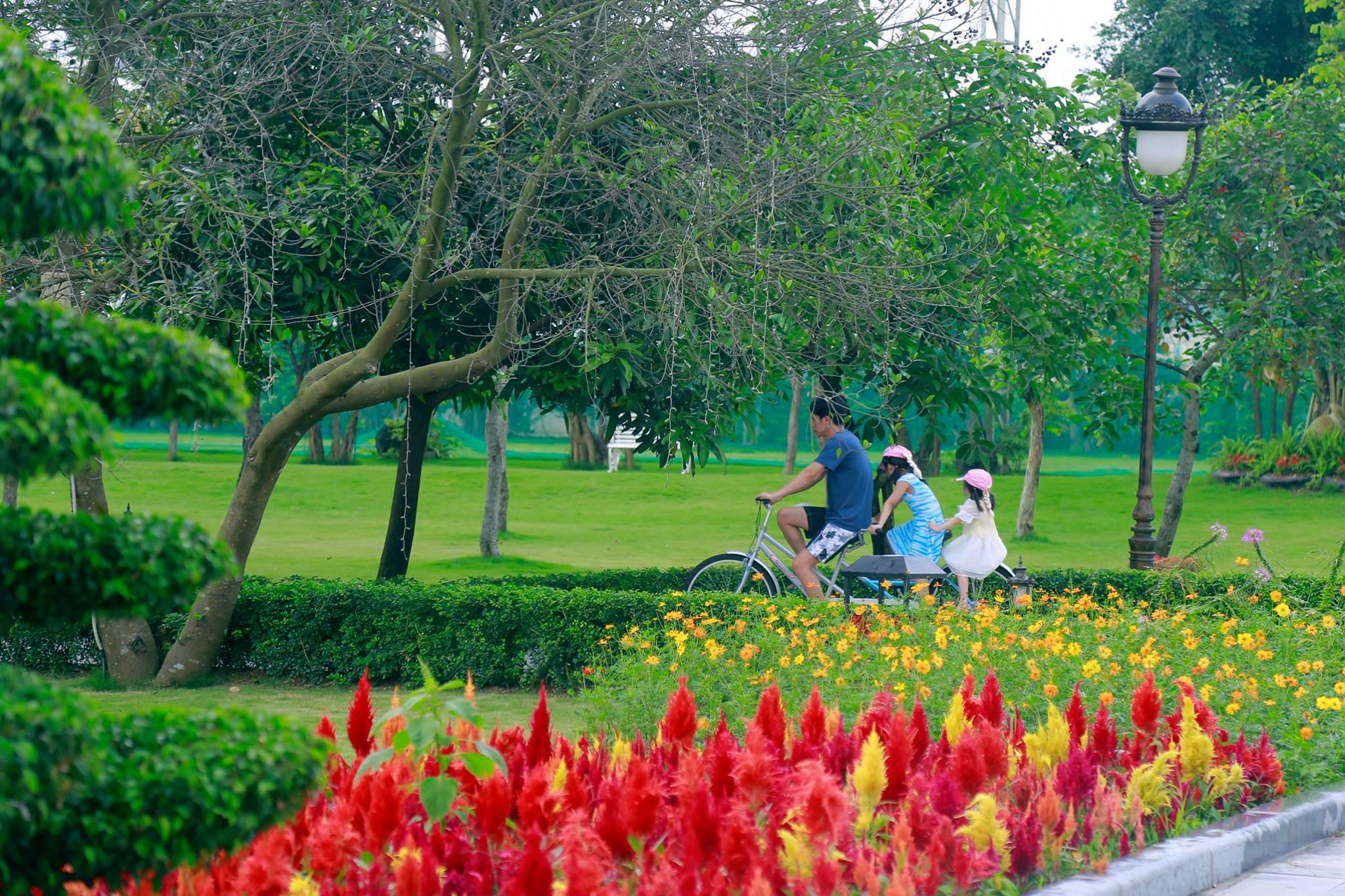 Rời xa phố thị về miền xanh trong lành tại hệ thống quần thể nghỉ dưỡng FLC Hotels & Resorts  - Ảnh 3