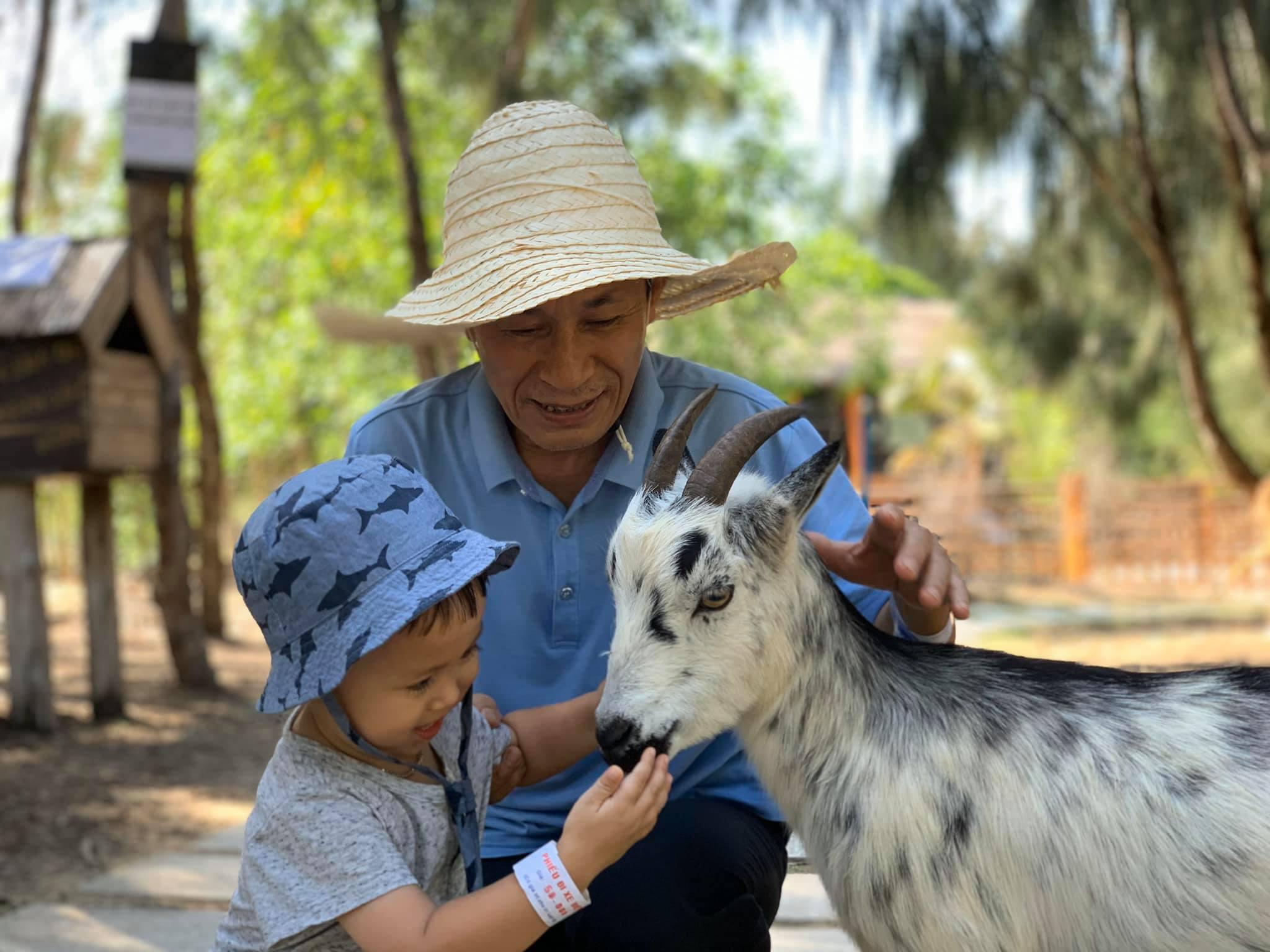Khám phá FLC Zoo Safari Park – vườn thú bán hoang dã độc đáo tại Quy Nhơn  - Ảnh 2