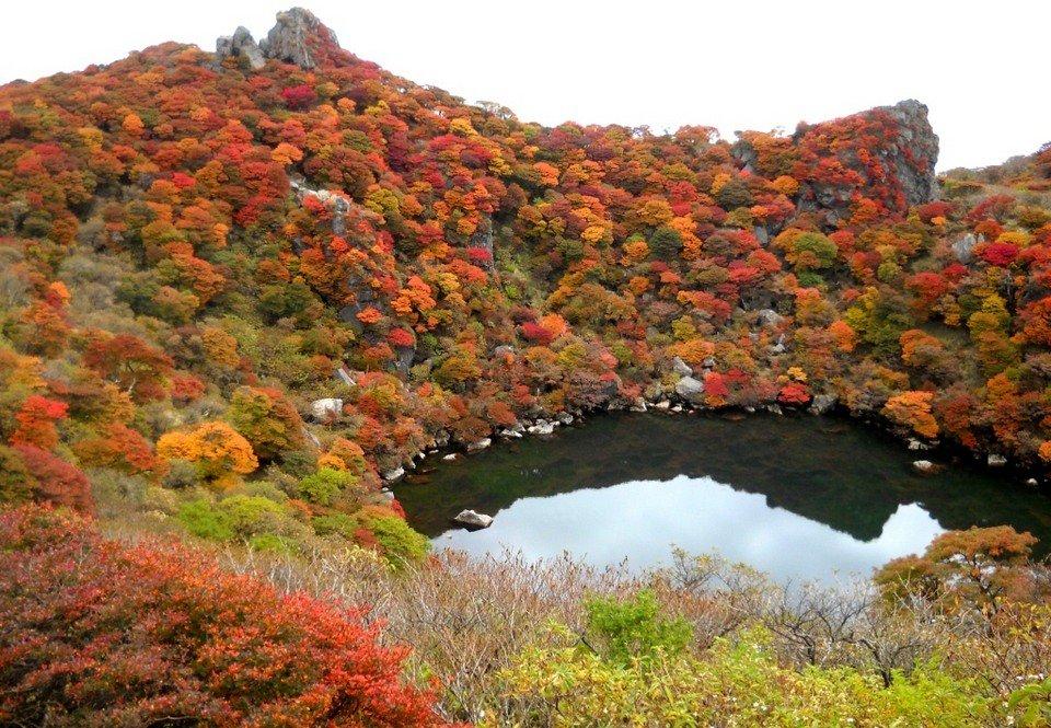 5 địa điểm với khung cảnh mùa thu không khác gì trong phim ở Đài Loan  - Ảnh 6