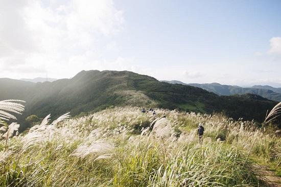 5 địa điểm với khung cảnh mùa thu không khác gì trong phim ở Đài Loan  - Ảnh 1