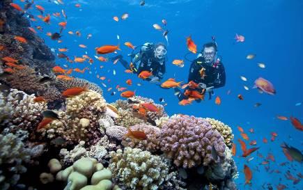 Phú Quốc 'đi đâu đu đưa' vào dịp Tết dương lịch 2020  - Ảnh 5