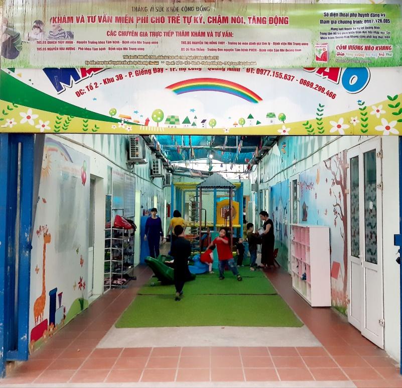 Chương trình khám và tư vấn miễn phí cho trẻ tự kỷ, chậm nói, tăng động tại Quảng Ninh  - Ảnh 1