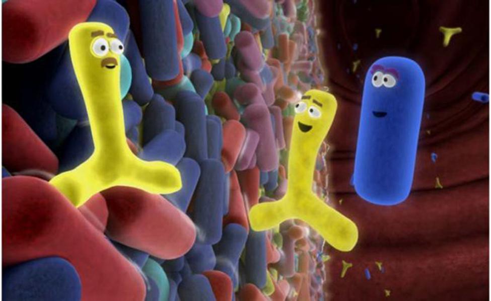Trẻ bị tiêu chảy khi uống thuốc kháng sinh: Mẹ nên làm gì?  - Ảnh 3