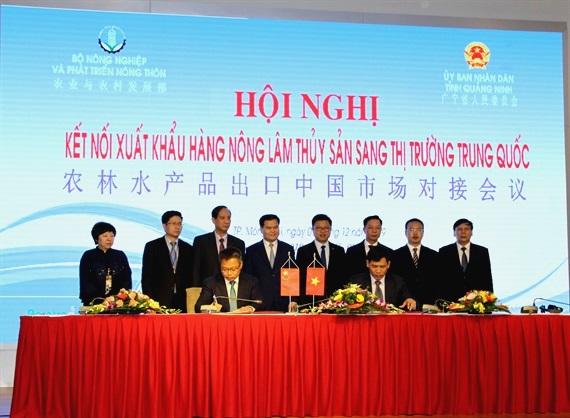 Hội nghị kết nối xuất khẩu hàng nông, lâm, thủy sản sang thị trường Trung Quốc  - Ảnh 3