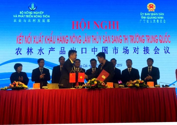 Hội nghị kết nối xuất khẩu hàng nông, lâm, thủy sản sang thị trường Trung Quốc  - Ảnh 4