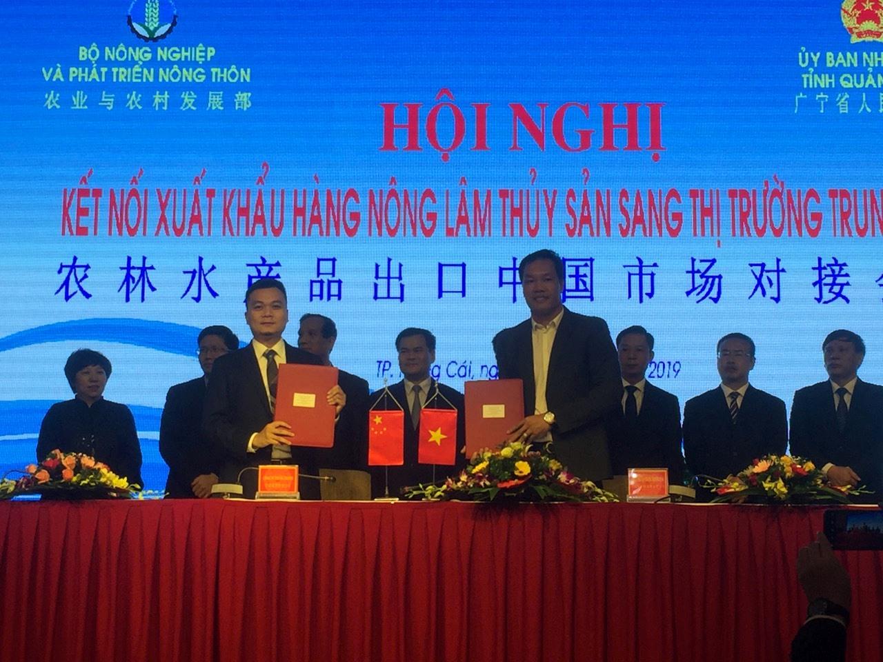 Hội nghị kết nối xuất khẩu hàng nông, lâm, thủy sản sang thị trường Trung Quốc  - Ảnh 5
