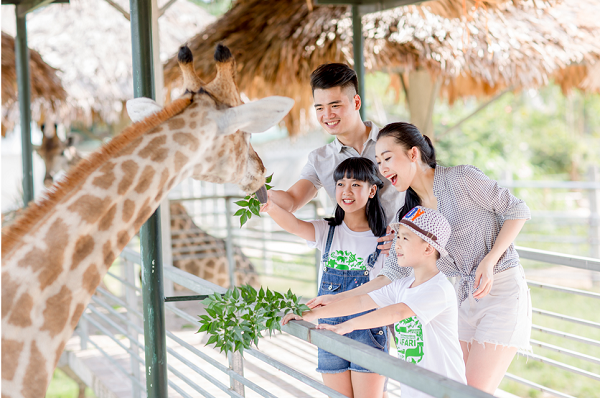 Mở cửa công viên nước lớn nhất Nghệ An: Chào hè với chương trình giảm 30% giá vé! - Ảnh 6