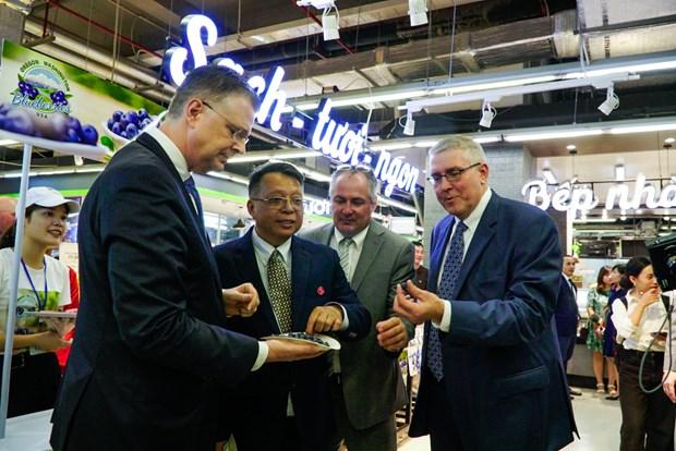 VinMart là nhà bán lẻ Việt đầu tiên được nhập khẩu việt quất từ Mỹ  - Ảnh 4