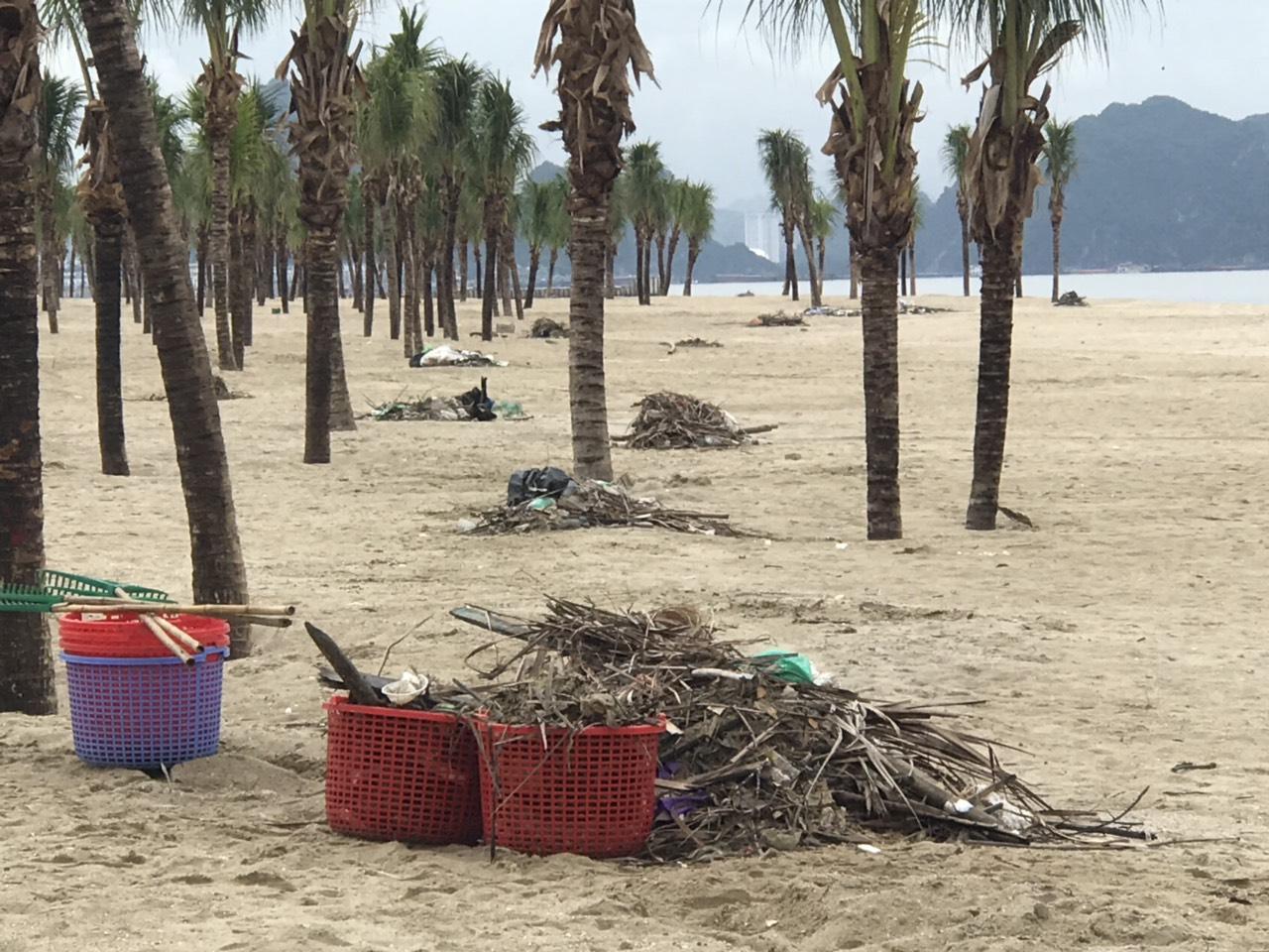 Bãi biển Bãi Cháy hứng 6 tấn rác từ du khách mỗi ngày - Ảnh 2