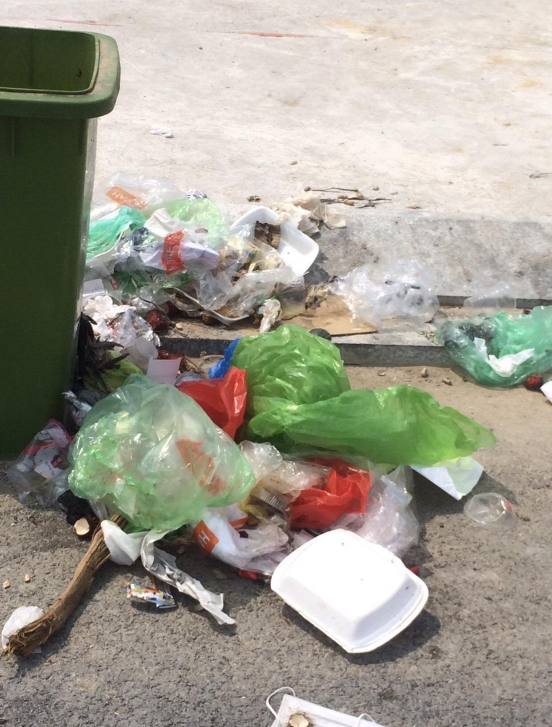 Bãi biển Bãi Cháy hứng 6 tấn rác từ du khách mỗi ngày - Ảnh 6