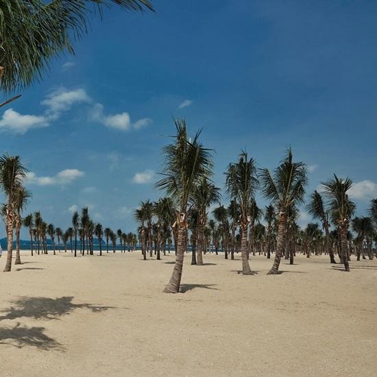 Bãi biển Bãi Cháy hứng 6 tấn rác từ du khách mỗi ngày - Ảnh 1