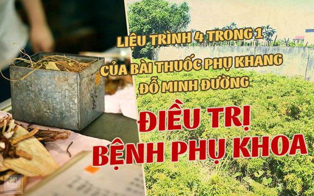 Bác sĩ Ngô Thị Hằng chữa bệnh phụ khoa tại nhà thuốc Đỗ Minh Đường  - Ảnh 3