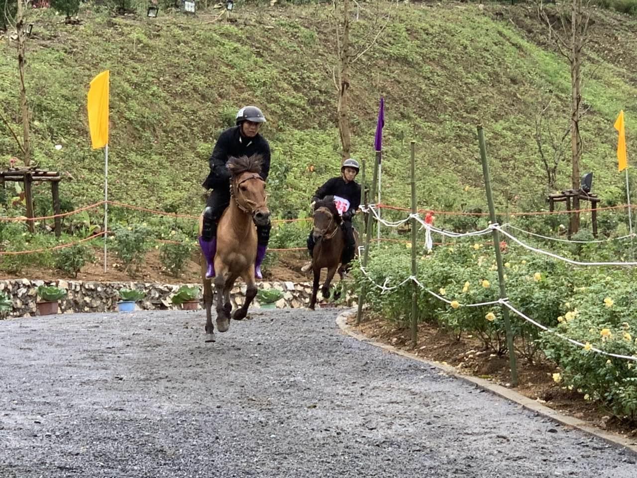 Chất Tây Bắc sống động khiến du khách thích thú với Giải đua ngựa tại Fansipan  - Ảnh 5