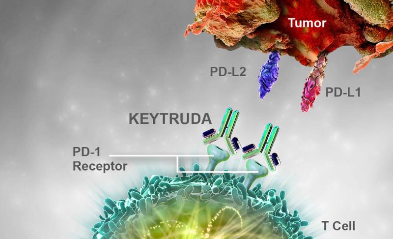 Lần đầu tiên tại Việt Nam điều trị thành công u lympho tế bào T/NK bằng thuốc miễn dịch  - Ảnh 2