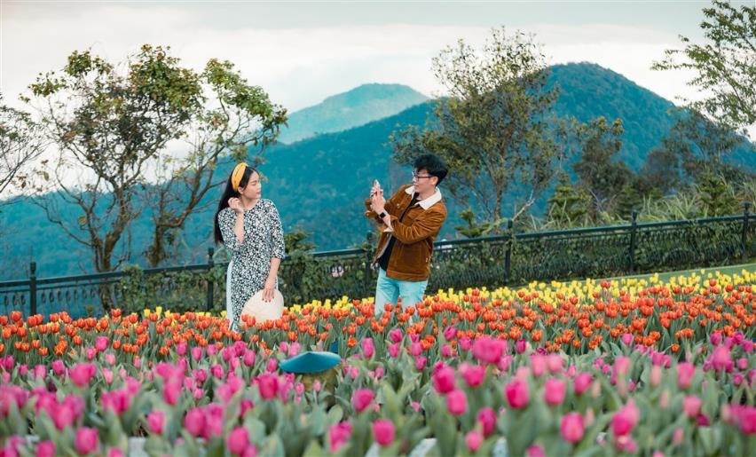 """Phiêu bồng xứ hoa Bà Nà, """"sống ảo"""" cùng 1,5 triệu bông tulip và hơn thế nữa  - Ảnh 11"""