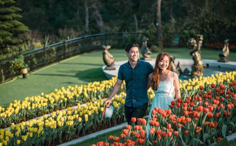 """Phiêu bồng xứ hoa Bà Nà, """"sống ảo"""" cùng 1,5 triệu bông tulip và hơn thế nữa  - Ảnh 4"""