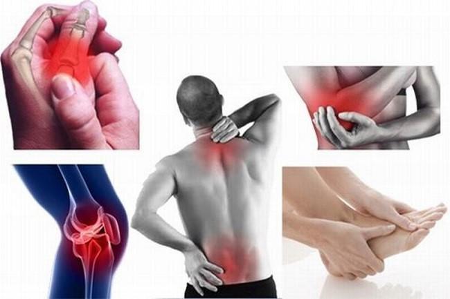 Bách Hoạt Trần Qúy - Sản phẩm độc đáo từ thảo dược cải thiện bệnh xương khớp hiệu quả - Ảnh 1