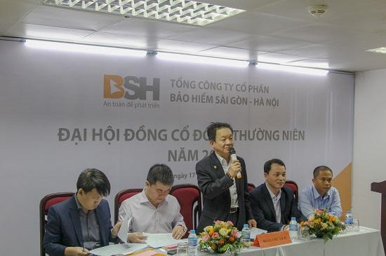 Bảo hiểm BSH đạt tăng trưởng doanh thu cao nhất thị trường năm 2019  - Ảnh 1