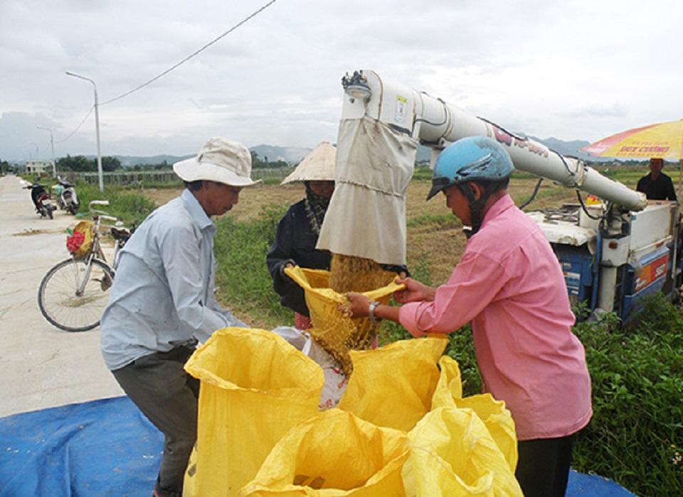 Xây dựng Nông thôn mới ở huyện Duy Xuyên, tỉnh Quảng Nam: Khi người người, nhà nhà đồng sức đồng lòng  - Ảnh 2