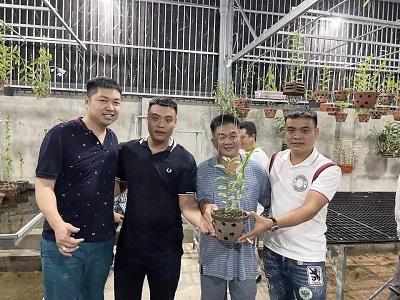 Nghệ nhân Bùi Hữu Thanh chia sẻ cách chăm hoa lan đơn giản, tỷ lệ thành công cao - Ảnh 2