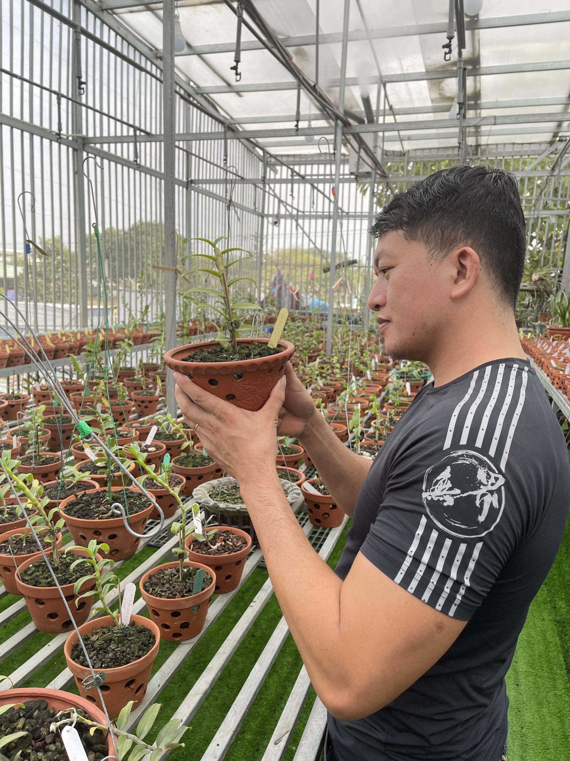 Doãn Chinh và hành trình theo đuổi hoa lan đầy thú vị - Ảnh 1