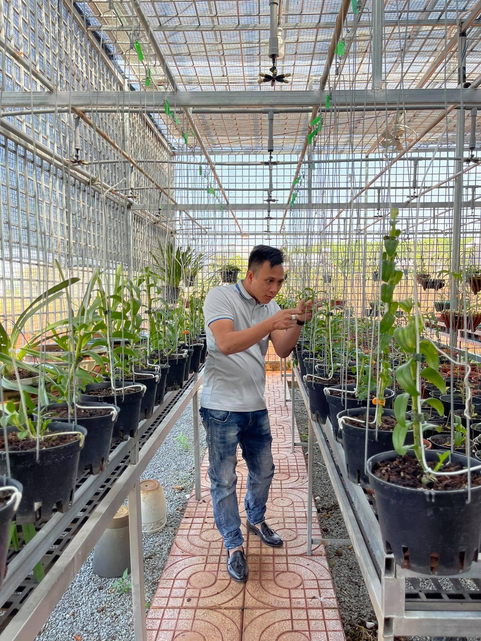 Ông chủ vườn lan Hạo Hạo và hành trình vượt lên thất bại từ hoa lan - Ảnh 2